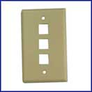 3 Port Wallplate